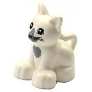 kat (kitten) white