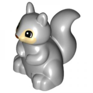 eekhoorn light bluish gray