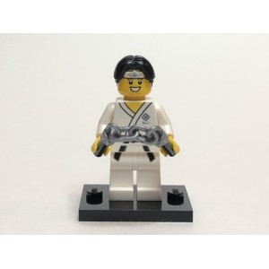 Martial Arts Boy, Series 20 (Complete Set with Stand and Accessories)
