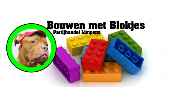 Bouwen met Blokjes